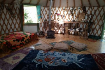 The King's Yurt